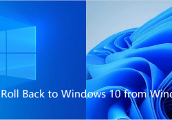 How to Roll Back to Windows 10