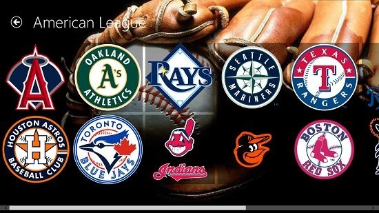 Baseball Pro league teams