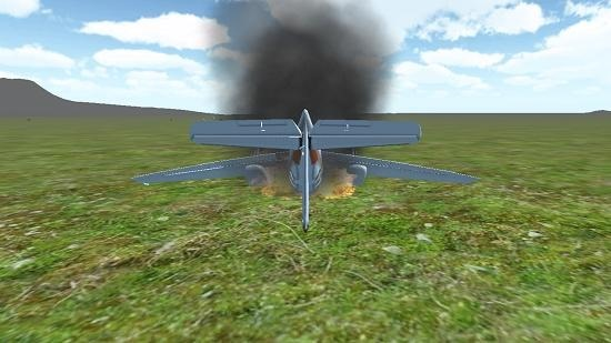 3D Flight Simulator crash
