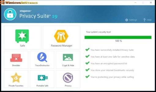 steganos privacy suite 2022 crack