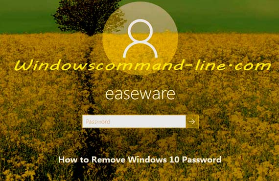 How to Remove Password Windows 10 - Step by Step