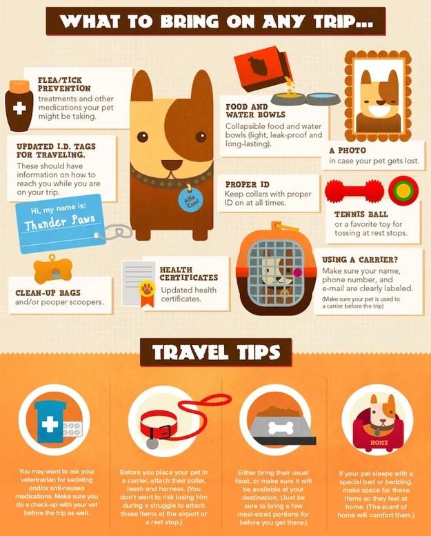 buzzfeed pet guide