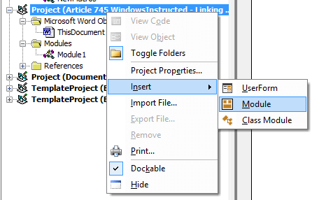Enabling Visual Basic in Office and adding a Module