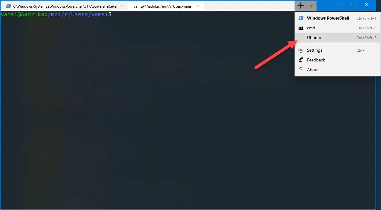 Ubuntu in windows terminal - ubuntu added to windows terminal