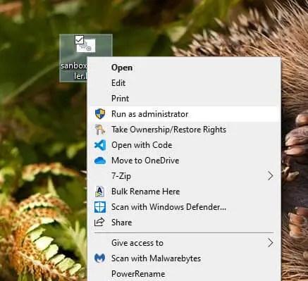 Windows-sandbox-in-home-edition-run-file