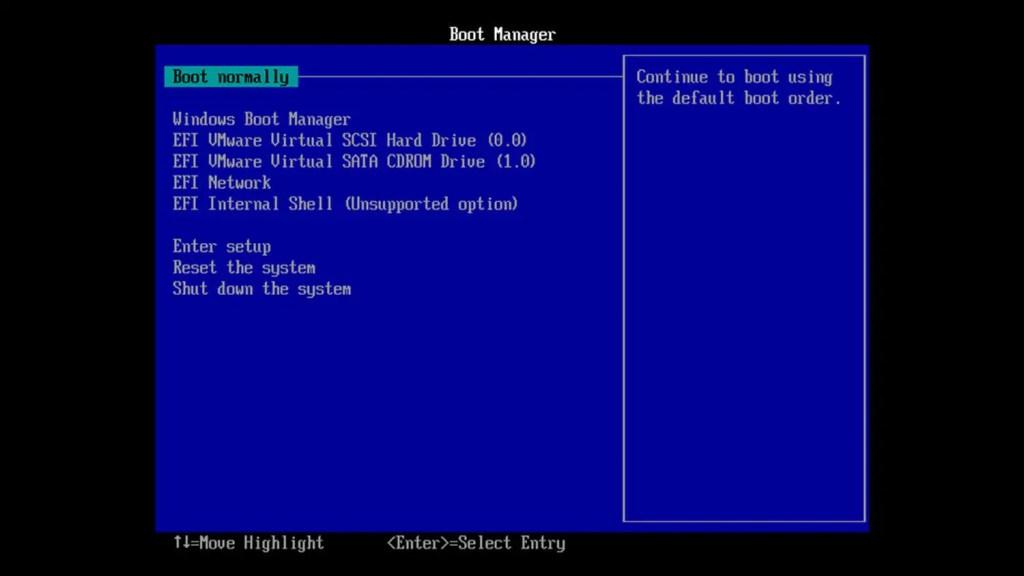 Access-vmware-bios-setup-windows-featured