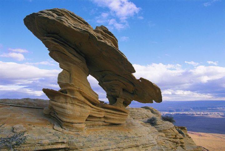 gambar dampak dari erosi