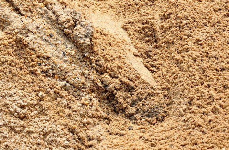 pasir bisa digunakan sebagai salah satu media tanam pada tanaman pot