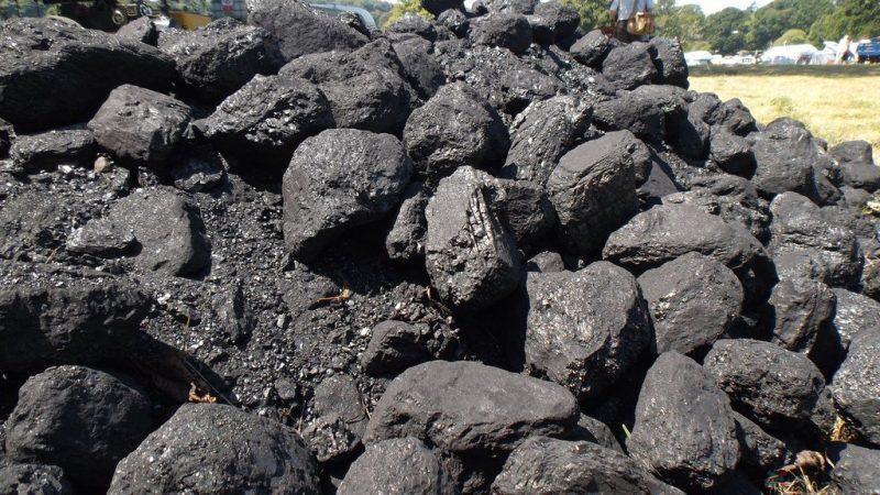 batubara bahan bakar