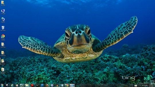 Download Free Bing Best Windows 7 Theme