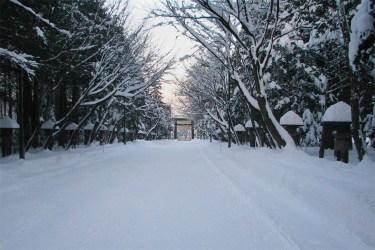 Hokkaido wilderness in snow