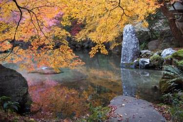 Kyoto: Pond at Rengeji