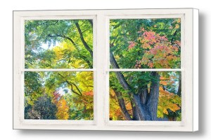 Colorful Forest Rustic Whitewashed Window View Canvas Art Print