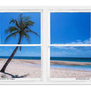 Beach window views
