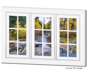 Wilderness window views