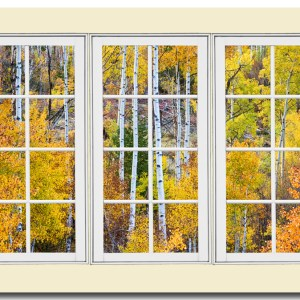 Autumn aspen tree forest in the Colorado Rocky Mountains Cottonwood Pass area view through a large white picture window frame. Bring nature indoors, now you can add a window with a view to any room in your home or office with our picture window frame fine art striking photography nature landscape art prints. The IMAGE is the FRAME, how cool is that!  PLEASE NOTE : The Window Frame is part of the image. We recommend printing as frame-less canvas wrap with white sides, acrylic print or metal print.   Question: Do you have a home or office room without any windows? Do you want to set the mood in a room decor? Do you dream of a room with a view?  The Answer: Now you can have a window with a view in any room with our NEW picture window frame fine art striking photography nature landscape poster prints, canvas wraps, acrylic fine art prints and metal prints, all with a view and ready to hang by photographer James Bo Insogna (C) All Rights Reserved.  This is an incredible way to decorate your office walls, home walls, cafe, restaurant, boardroom, waiting room, trade booth, corporation or almost any commercial  Colorado Fine art nature landscape photography poster prints, decorative canvas prints, acrylic prints, metal prints, corporate artwork, greeting cards and stock images by James Bo Insogna (C) - All Rights Reserved.  *PLEASE NOTE, WATERMARKS WILL NOT BE ON THE PURCHASE PRINTS*