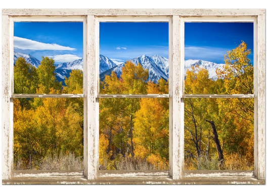 Independence Pass Autumn White Peeling Window View 32x48x1.25 Premium Canvas Gallery Wrap