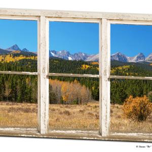 Colorful Aspen Tree Forest White Rustic Window 32″x48″x1.25″ Premium Canvas Wrap Art