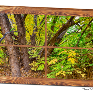 Glorious Golden Forest Window View 32″x48″x1.25″ Premium Canvas Wrap Art