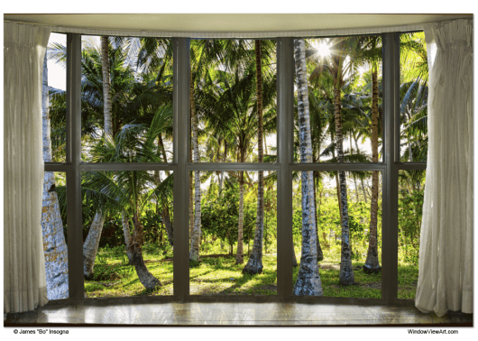 Tropical Jungle Reflections Bay Window View 32x48x1.25 Canvas Gallery Wrap