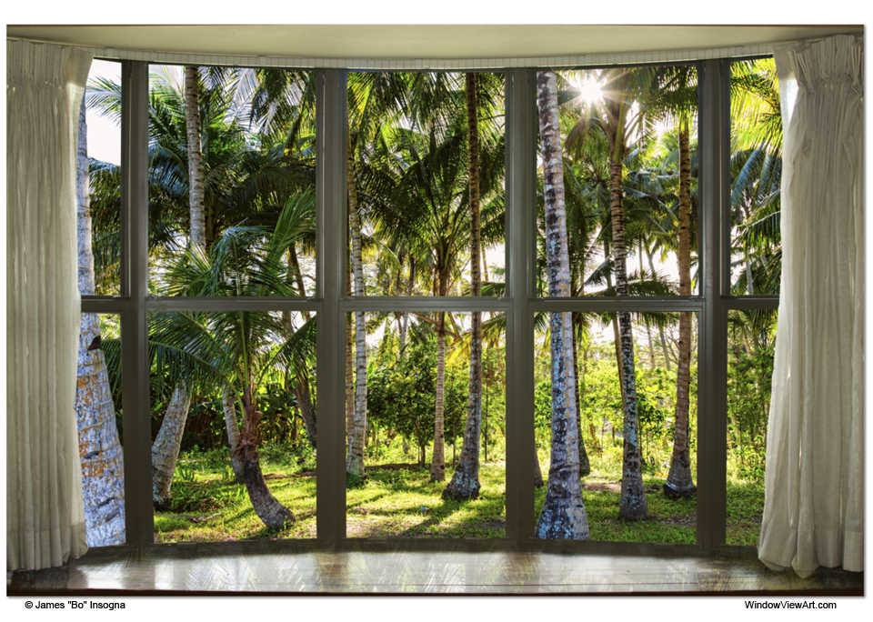 Tropical Jungle Reflections Bay Window View Canvas Art