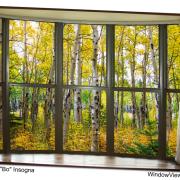 Autumn Forest Bay Window View 32x48x1.25 Premium Canvas Gallery Wrap Art
