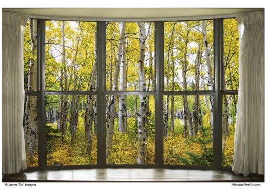 Autumn Forest Bay Window View 32x48x1.25 Premium Canvas Gallery Wrap Art