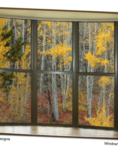 Autumn Forest Red Wilderness Floor Bay Window View 32″x48″x1.25″ Premium Canvas Gallery Wrap