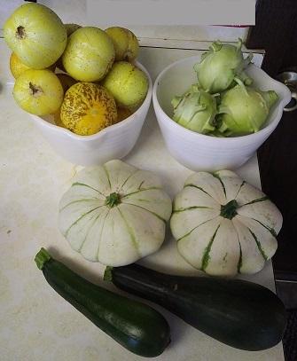 cucurbits-and-kohlrabi