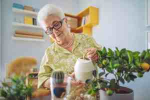 What Is It Like to Live In Assisted Living?