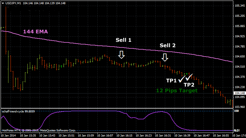 The 12 Pips Foreign Exchange Scalping System