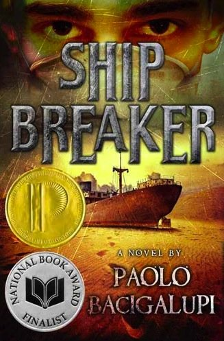 Image result for ship breaker