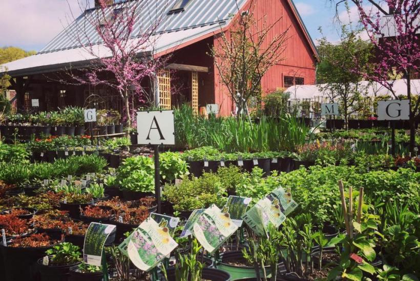 Retail Garden Center