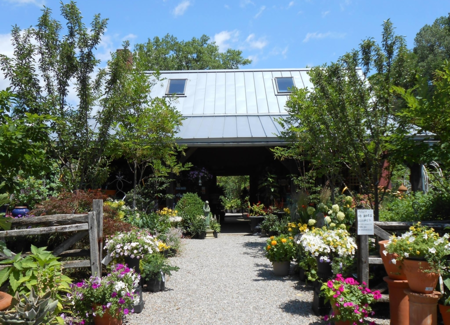 windy hill garden center