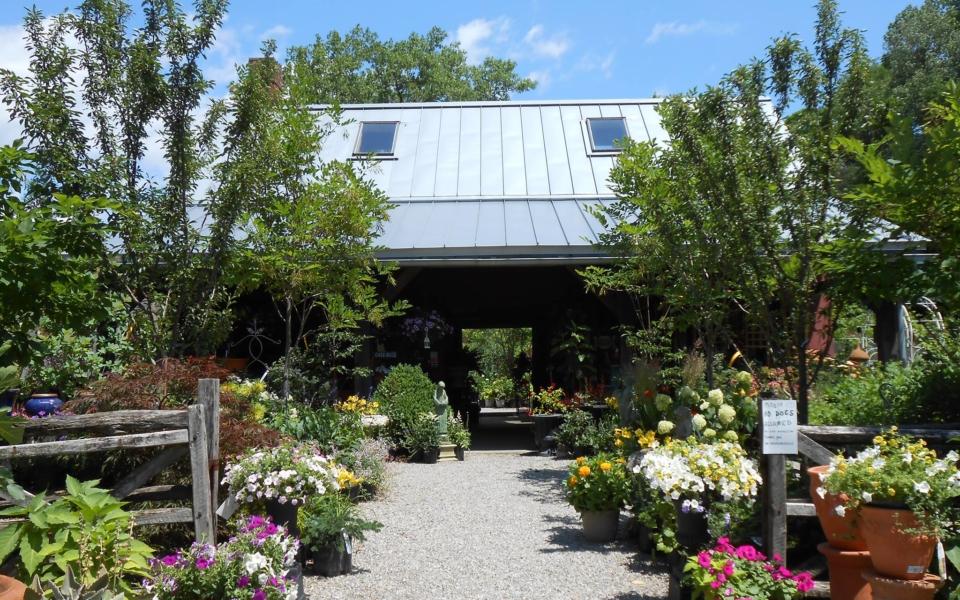 windy hill garden center