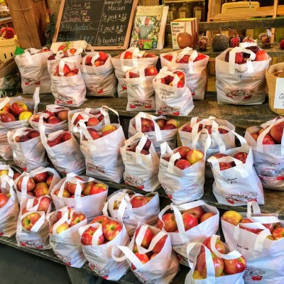 Celebrate Thanksgiving with Berkshire-Grown Apples   November 6, 2019