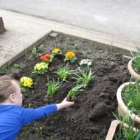 Digging the Garden Part 2