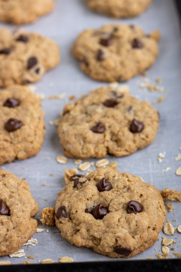 A large baking sheet with parchment paper with oatmeal chocolate chip cookies on it. The chocolate chips are slightly melted and there's rolled oats and cookie crumbs sprinkled on the baking sheet