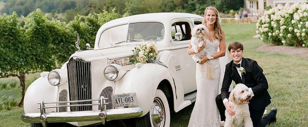 Wedding Transportation, Wedding Car, Getaway Car, Virginia Wedding Car, Cville Transportation, Wedding Pets