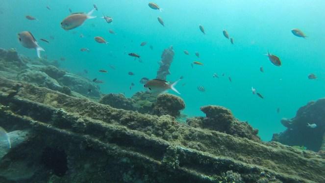 Sandals Royal Barbados | Travel Couple Blog | Caribbean | Snuba  | Shipwreck
