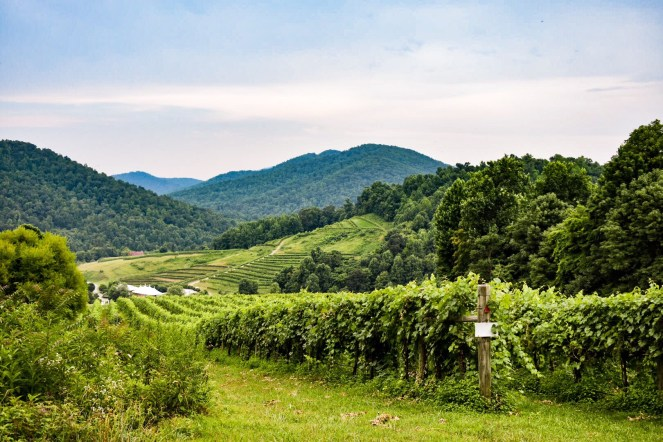 best Wineries in Virginia