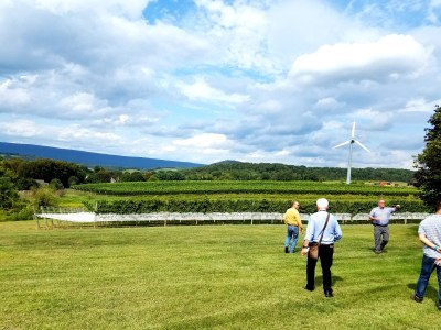 Wine Casual, Stony Run Winery uses fans to protect vines from frost damage.