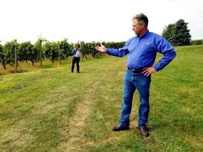 Wine Casual, Waltz Vineyards, owner and winemaker, Jan Waltz.