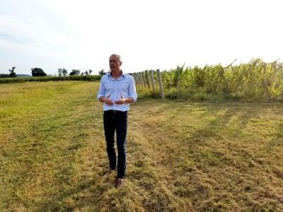 Vox Vineti Wines' owner and winegrower, Ed Lazzerini.  Wine Casual.