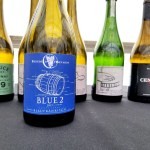 Beneduce Vineyards, Blue 2 Blaufränkisch 2017, New Jersey, Wine Casual