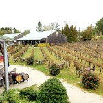 A Wine Geek's Guide to 14 Top New Jersey Wineries and Choice Wines to Try During Your Winetasting Visits. Wine Casual