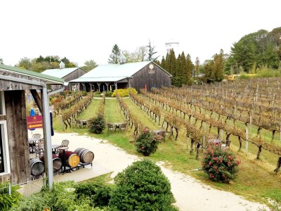 Cape May Winery & Vineyard, Wine Casual
