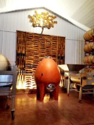 Cape May Winery & Vineyard uses a egg-shaped fermenter to enhance minerality in its wines. Wine Casual
