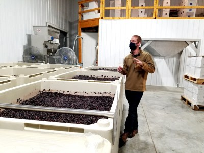 Mike Beneduce Jr., Winemaker and Vineyard Manager of Beneduce Vineyards, feels blaufränkisch's versatility makes it an attractive red-grape option for New Jersey grape growers.