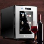 Costway 6 Bottle Thermoelectric Wine Cooler - Does it Meet Expectations?